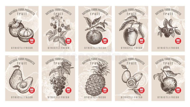 Prislappar för bär och frukter vektor illustrationer