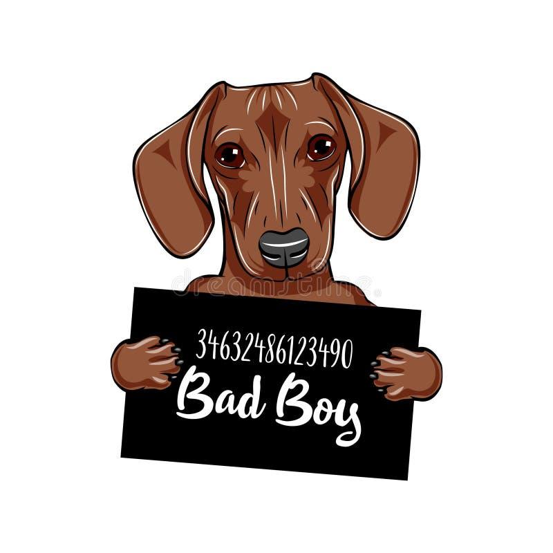 Prison de chien de chien de teckel Criminel de teckel Chien arrêté Garçon du mauvais de teckel Vecteur illustration stock