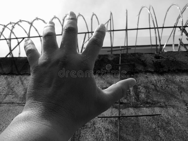 Prisonnier photos libres de droits