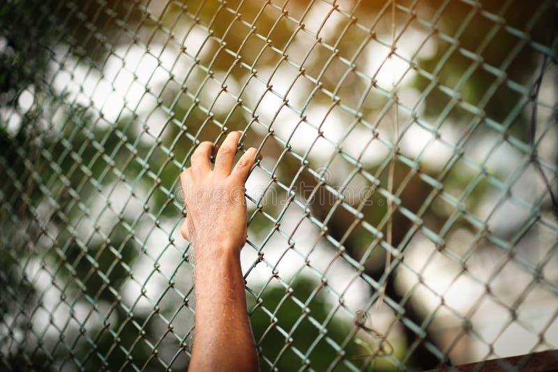 Prisonnier masculin dans la salle de détention photographie stock