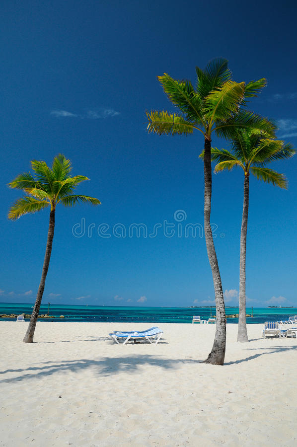 Pristine beach of Bahama stock photos