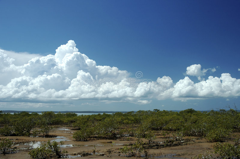 Download Pristine Clouds stock image. Image of pasteurized, unstained - 97291