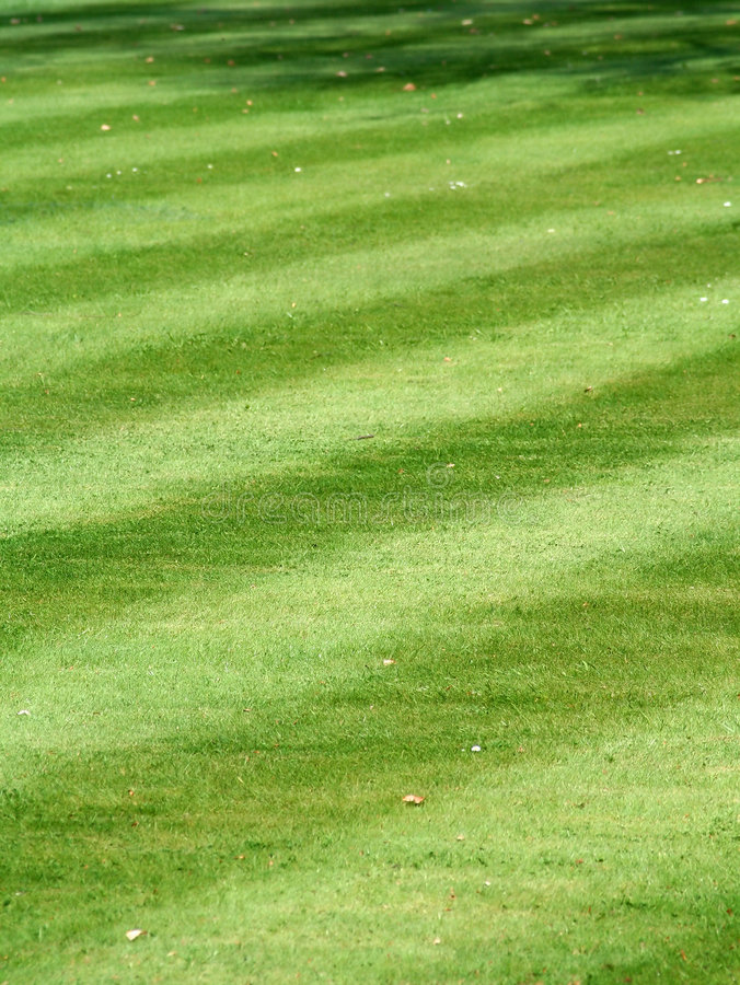 A pristine striped grass lawn stock images