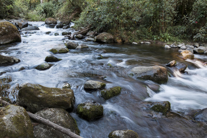 The pristine waters of the Savegre River. Costa Rica royalty free stock image