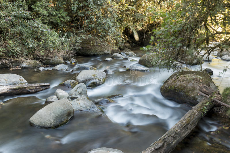 The pristine waters of the Savegre River. Costa Rica stock photos