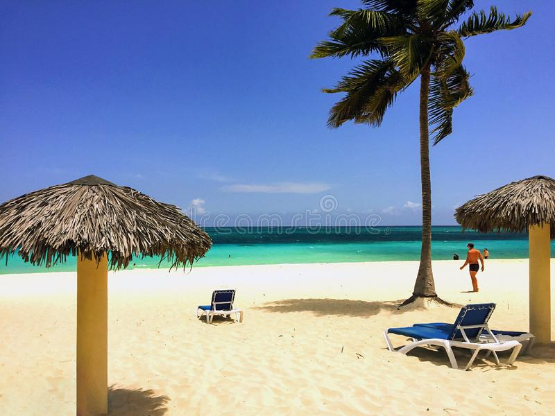 Pristine sandy beach with palm tree, palapa, tourists stock photo