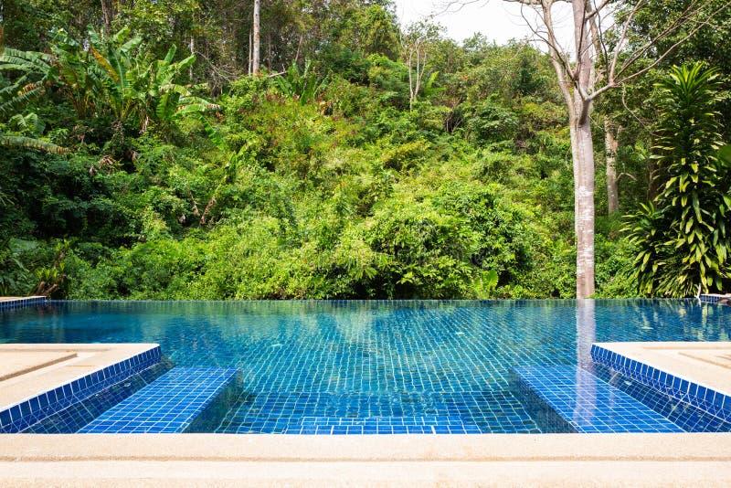 Privé pool met bos toneel stock foto