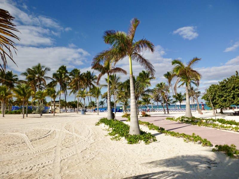 Privat ö på Bahamas royaltyfria foton