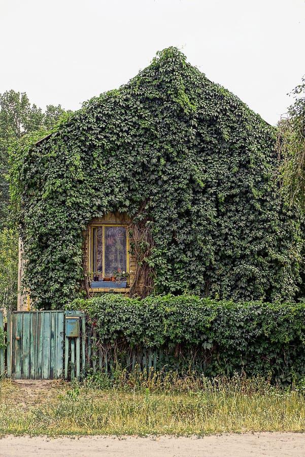 Privat lantligt hus som är bevuxet med grön vegetation arkivbilder