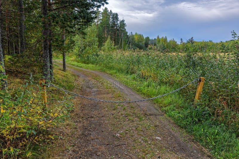 Privat skogväg royaltyfria foton