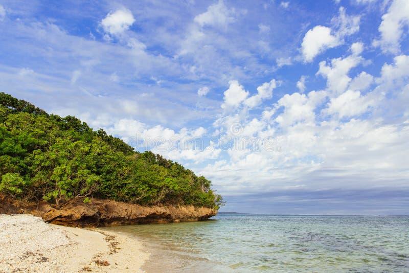 Privat strand längs korallkusten av Fiji i sommar arkivbilder
