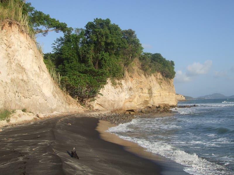 Privat strand på Saint Lucia royaltyfria bilder