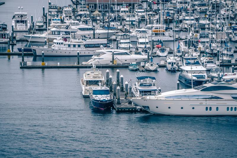 private boats and yachts are moored in the harbor at Elliott Bay stock photography