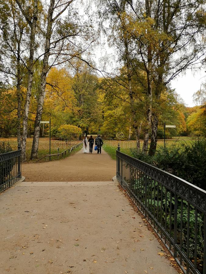 Private intimate wedding on a golden autumn day in Berlin stock image