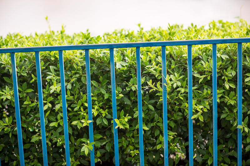 Private property, silver chain link fence pattern with tree on background. stock photo