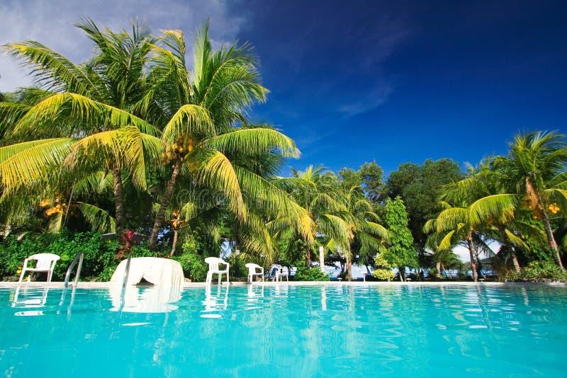Private resort pool stock images