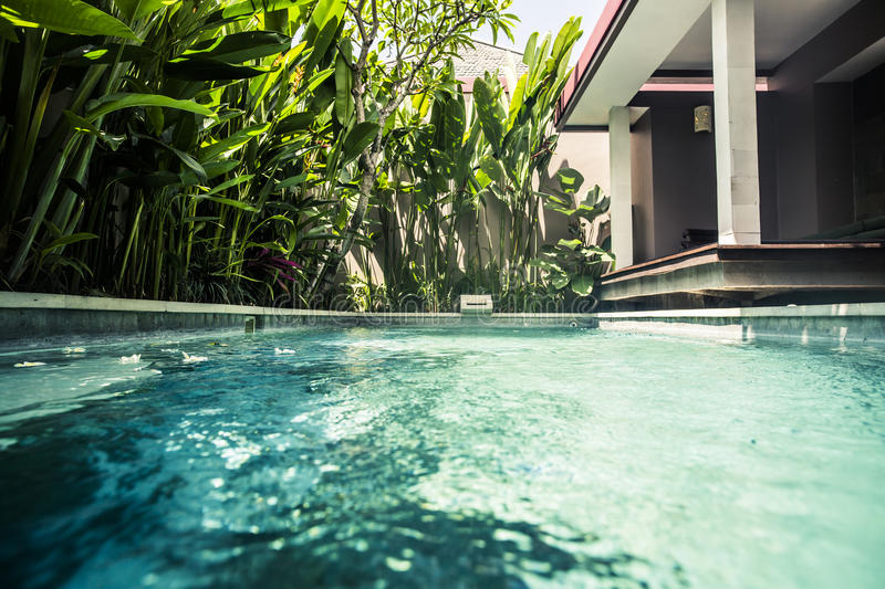 Download Private Villa Swimming Pool Stock Image - Image of swimming, tropical: 78915405