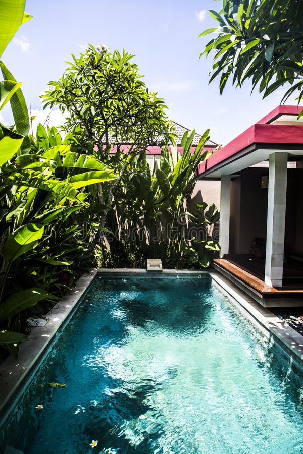 Download Private Villa Swimming Pool Stock Image - Image of indonesia, tropical: 78915433
