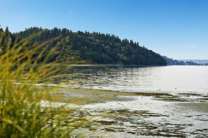 Privater Strand mit Puget Sound-Ansicht, Burien, WA lizenzfreie stockbilder