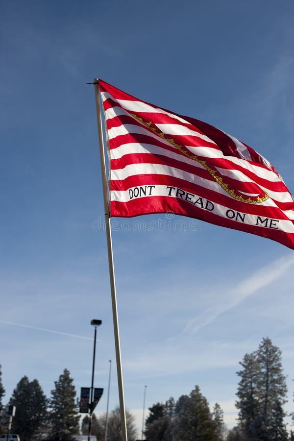Pro Amerykański sztandar przy wiecem. obraz royalty free