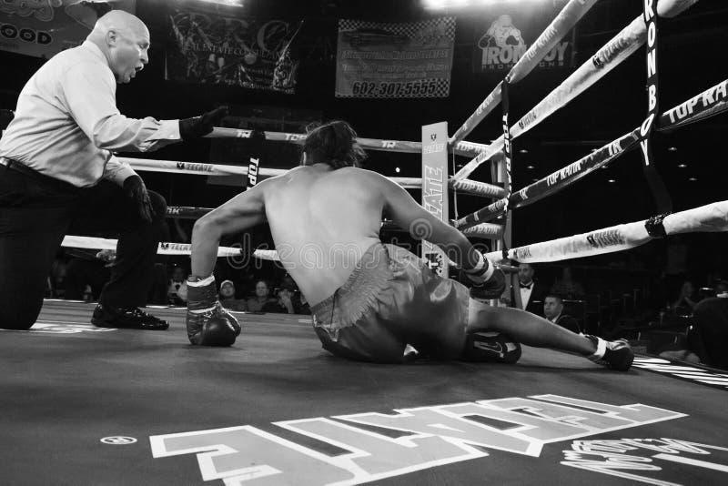 Pro-boxning i Phoenix, Arizona royaltyfria foton
