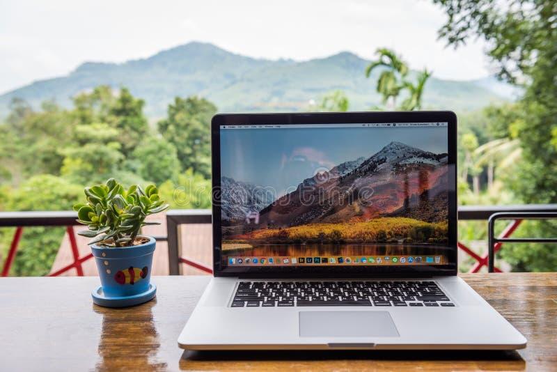 Pro computador de Macbook com vaso de flores imagem de stock
