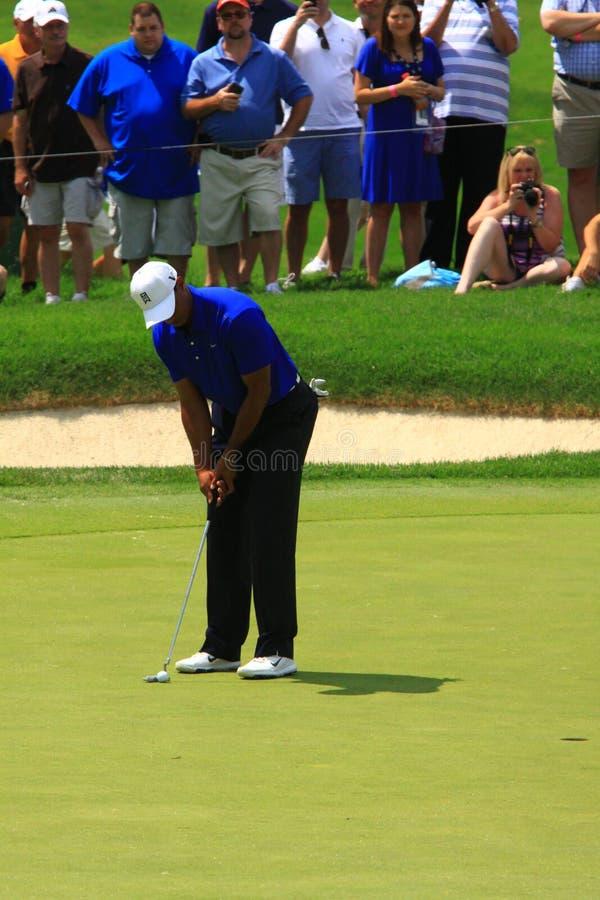 Pro golfeur Tiger Wood images libres de droits