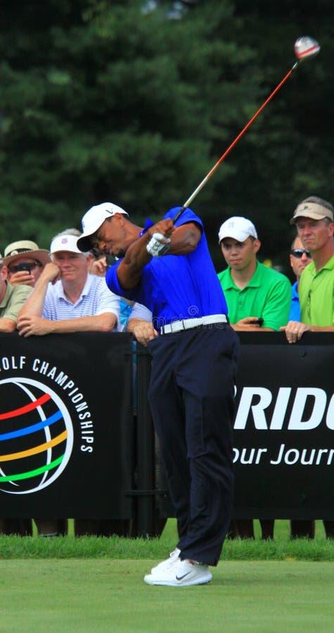 Pro golfista Tiger Woods obrazy stock