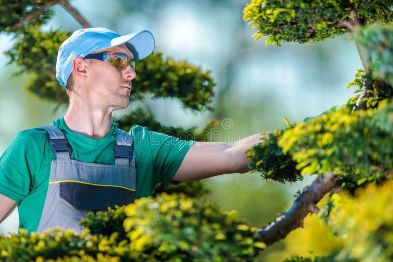 Pro ogrodniczka przy pracą fotografia stock