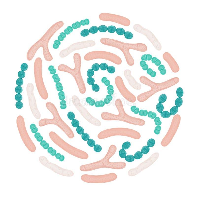 Probiotici di vettore nella forma circolare Bifidobacterium, lattobacillo, streptococcus thermophilus, lactococcus royalty illustrazione gratis