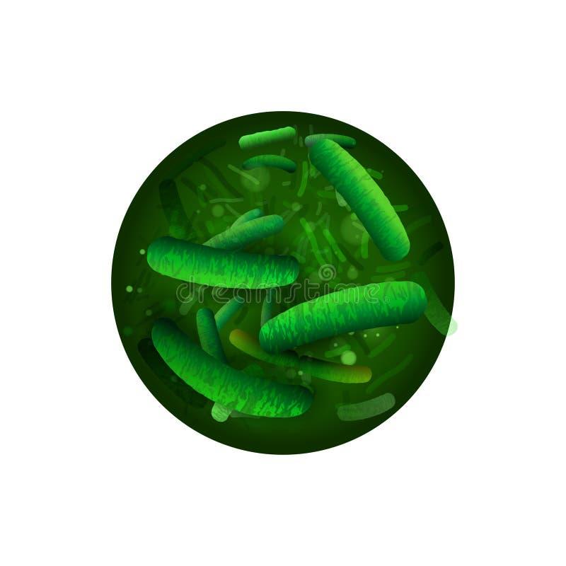 probiotici e prebiotics illustrazione di stock