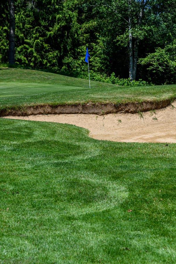 Problem på golfbanan, sandfälla som skyddar en golfgräsplan med träd i bakgrunden arkivbild