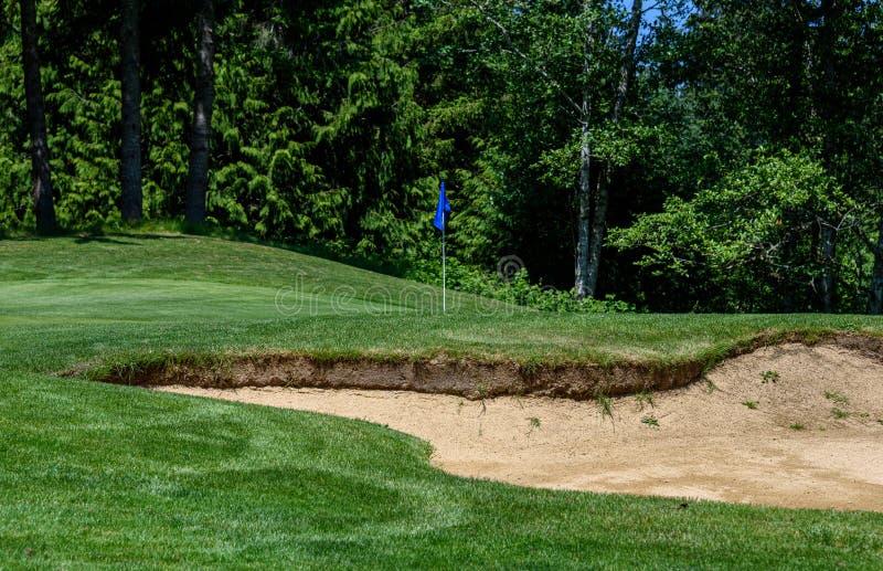 Problem på golfbanan, sandfälla som skyddar en golfgräsplan med träd i bakgrunden royaltyfria bilder