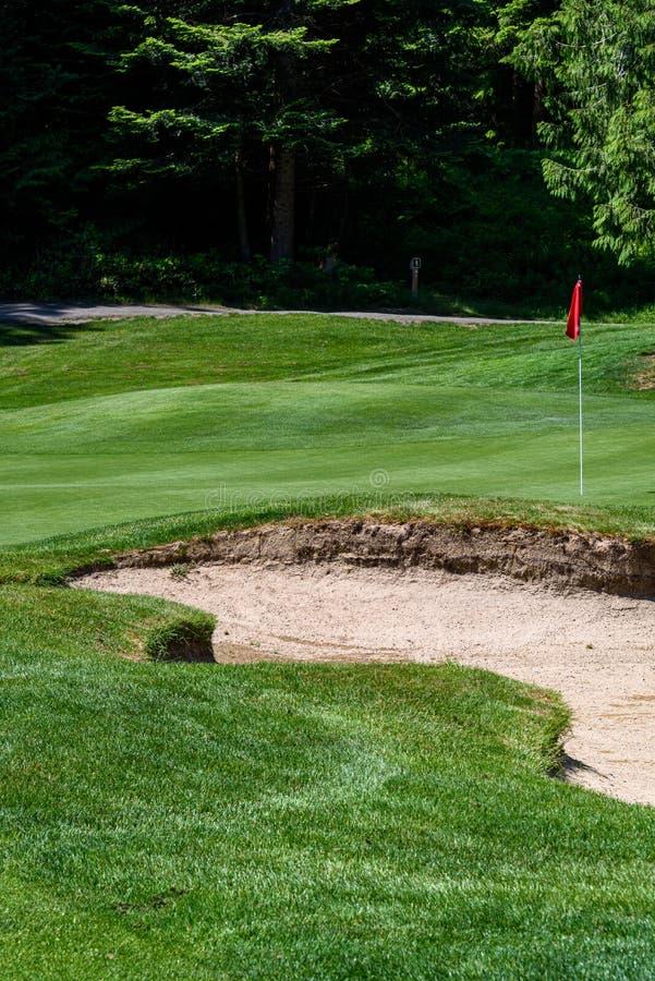 Problem på golfbanan, sandfälla som skyddar en golfgräsplan med träd i bakgrunden, inkluderar stiftet med den röda flaggan och go royaltyfri fotografi