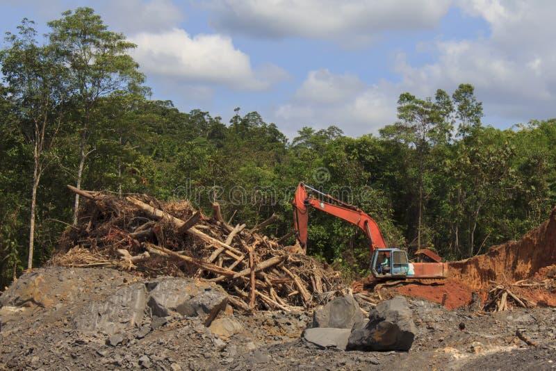 Problema ambiental de la tala de árboles imágenes de archivo libres de regalías