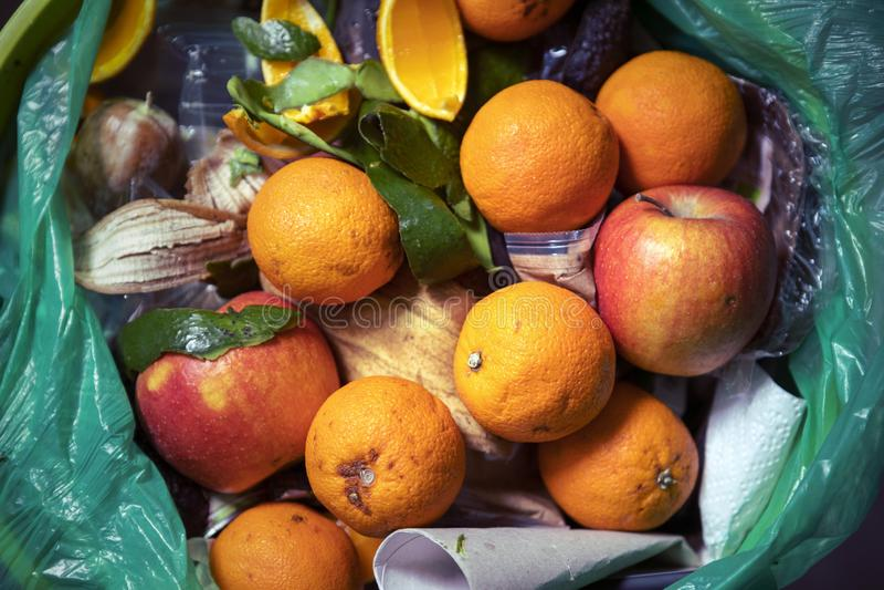 Problema de desperdício do alimento, sobras jogadas no balde do lixo Alimento estragado no escaninho da recusa As laranjas e as m imagem de stock