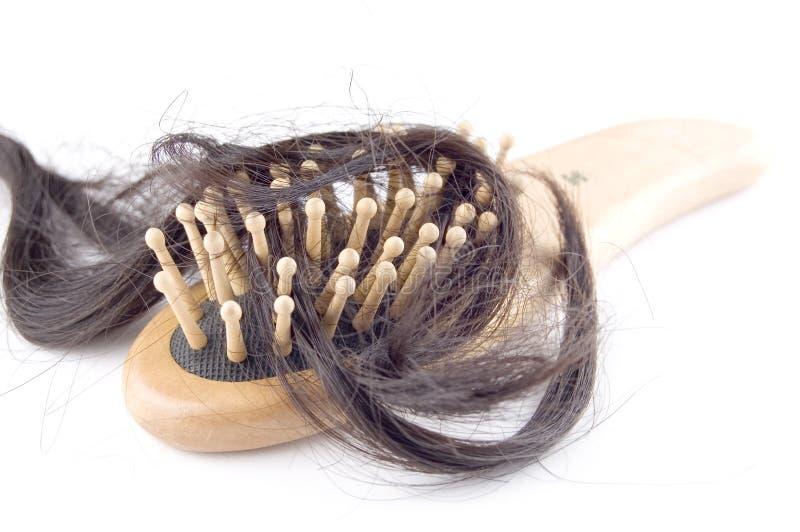 Problema de la pérdida de pelo foto de archivo libre de regalías