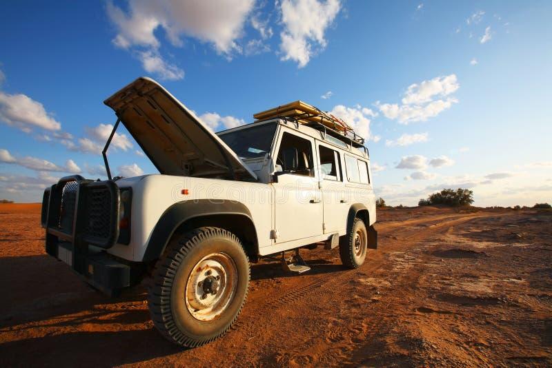 Problemas do safari foto de stock