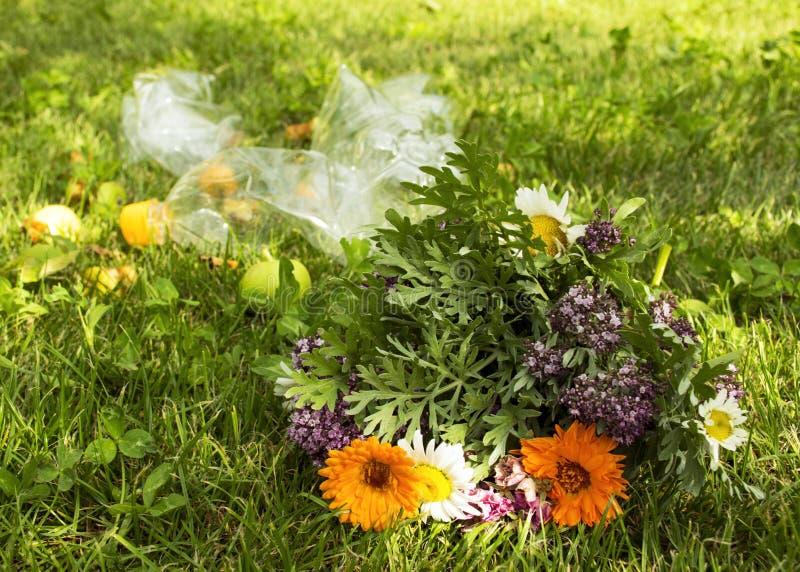 Problemet med förorening Härlig bukett av lösa blommor på en bakgrund av avskräde Racka ner på på gräsmattan arkivbilder
