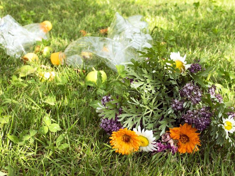 Problemet med förorening Härlig bukett av lösa blommor på en bakgrund av avskräde Racka ner på på gräsmattan arkivfoton