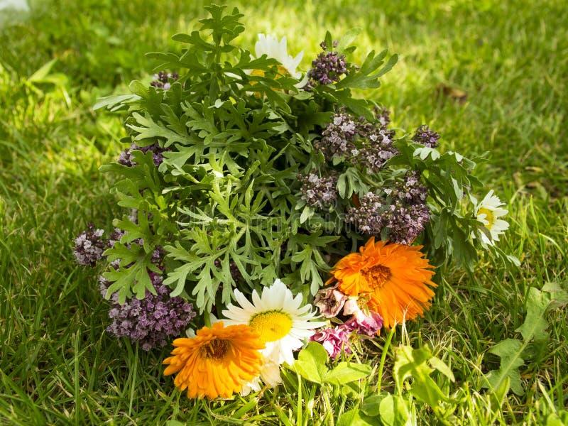 Problemet med förorening Härlig bukett av lösa blommor på en bakgrund av avskräde Racka ner på på gräsmattan royaltyfri fotografi