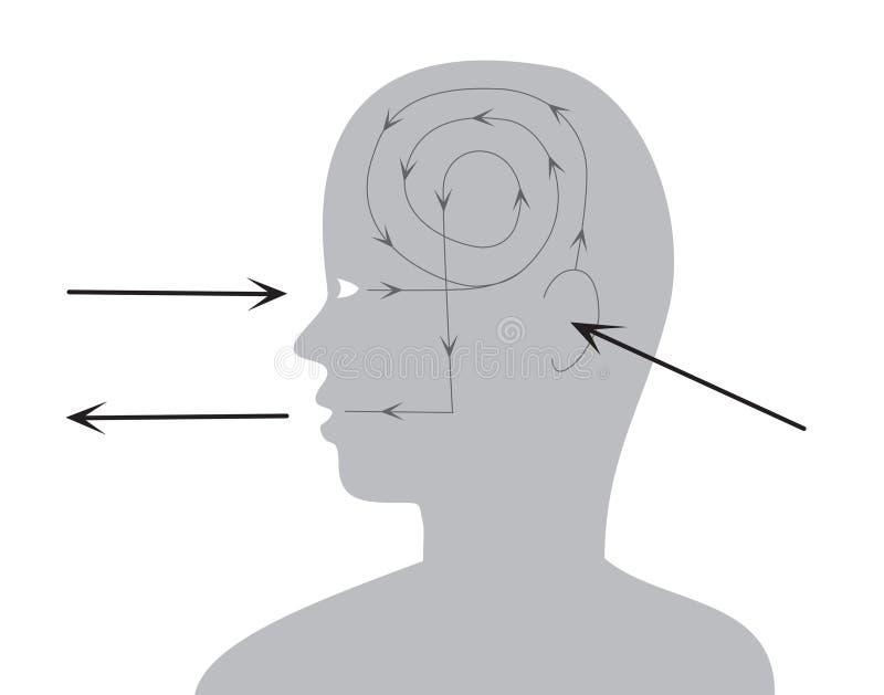 Procédé de perception et de reac illustration de vecteur
