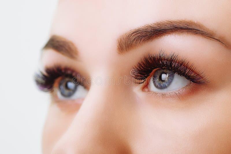 Procédure d'extension de cil Oeil de femme avec de longs cils Fermez-vous vers le haut, foyer sélectif photo stock