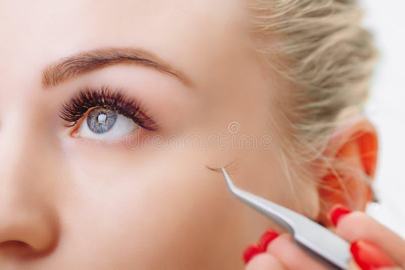 Procédure d'extension de cil Oeil de femme avec de longs cils Fermez-vous vers le haut, foyer sélectif image libre de droits