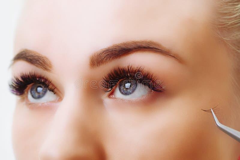 Procédure d'extension de cil Oeil de femme avec de longs cils Fermez-vous vers le haut, foyer sélectif images stock