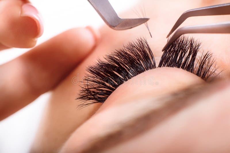 Procedimento da extensão da pestana Olho da mulher com pestanas longas Chicotes, fim acima, macro, foco seletivo imagens de stock