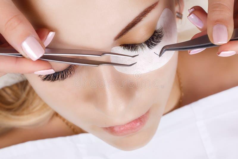 Procedimento da extensão da pestana Olho da mulher com pestanas longas Chicotes, fim acima, macro, foco seletivo foto de stock royalty free