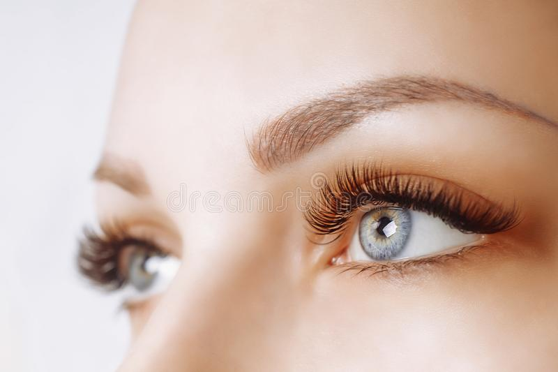 Procedimento da extensão da pestana Olho da mulher com pestanas longas Feche acima, foco seletivo foto de stock
