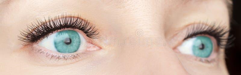 Procedimento da extensão da pestana - os olhos de verde da forma da mulher com as pestanas falsas longas perto acima, beleza, com fotos de stock royalty free