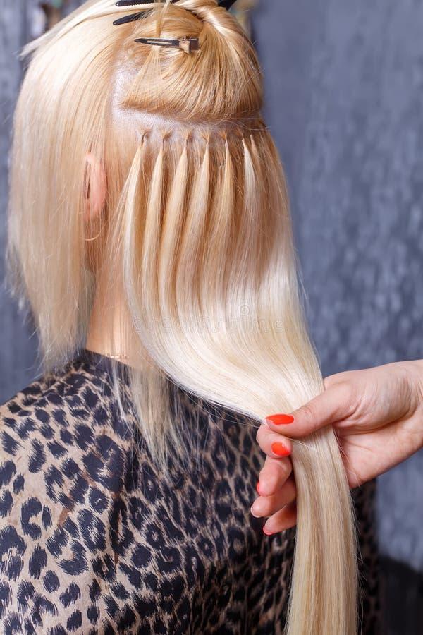 Procedimento das extensões do cabelo O cabeleireiro faz extensões do cabelo à moça, louro em um salão de beleza Foco seletivo imagem de stock